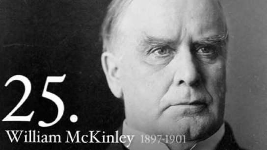 president william mckinley family tree - 544×306