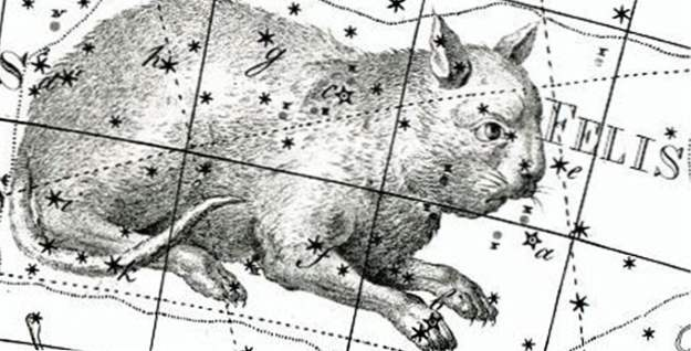15 constellations qui sont maintenant éteintes